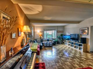 Fantastic 1BR in East Village - New York City vacation rentals