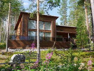 Wonderful 3 bedroom Cottage in Koli - Koli vacation rentals
