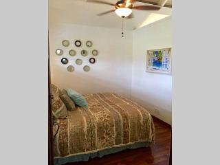 Hale Honu~Perfect for a couple - Princeville vacation rentals