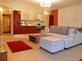 Nordului 2 - 2 bedroom apartment - Bucharest vacation rentals
