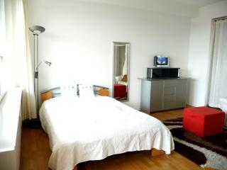 sonniges city apartment - Berlin vacation rentals