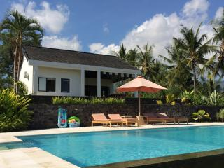 Bali Sea View Villa - Anturan vacation rentals