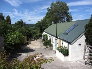 1 bedroom Barn with Internet Access in Compton Dundon - Compton Dundon vacation rentals