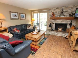 Comfortable 3 Br Chateaux Unit, Pool, Hot tub, 6th night free - Crested Butte vacation rentals