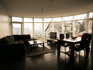 Loft Apartments - City Center - Reykjavik vacation rentals