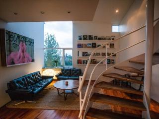 Loft Apartments - Reykjavik Center - Reykjavik vacation rentals