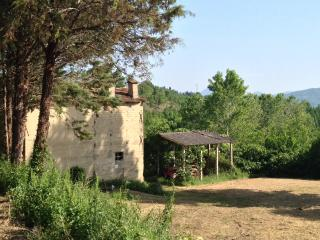 Charming Tuscan/Umbrian  Rustic Farmhouse - Montone vacation rentals