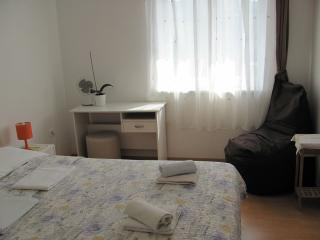 Lovely Apartment with Seaview and Terrace - Piran vacation rentals