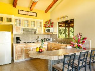Villas Alturas, Exotic Costa Rican View - Dominical vacation rentals