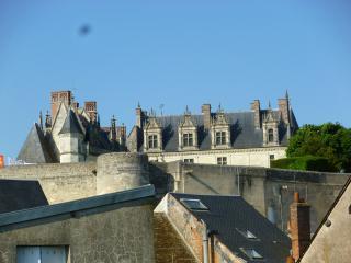 Appart 2 pièces Amboise hypercentre vue chateau - Amboise vacation rentals