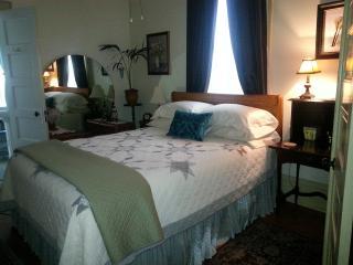 1 Bedroom Suite - Walk to MU $125/night - Columbia vacation rentals