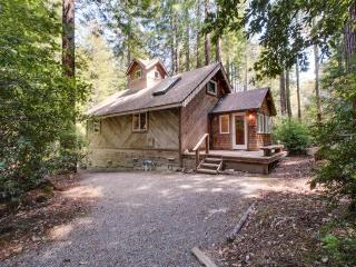 Cozy Mendocino cottage with gorgeous views & relaxing, quiet atmosphere - Mendocino vacation rentals