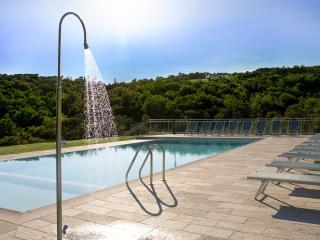 Villa cantone with private SPA - Sansepolcro vacation rentals