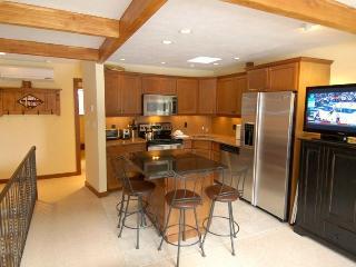 Aspen Townhouse East Unit 3 - Aspen vacation rentals