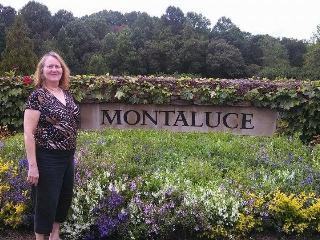 DAHLONEGA MOUNTAIN CABIN WITH GARAGE - Dahlonega vacation rentals