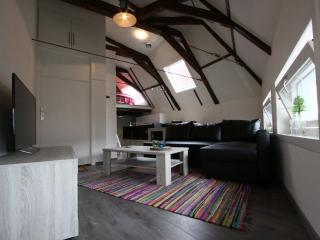 Super Stylish Apt in Heart of Town - Utrecht vacation rentals