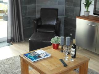 Luxurious house with roofterras near City Centre! - Amsterdam vacation rentals