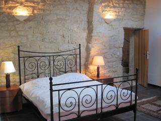Luxury, 13th to 21st century village house - Nezignan l'Eveque vacation rentals