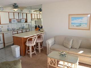 BEAUTIFUL 2 BEDROOM OCEAN FRONT CONDO - Garden City Beach vacation rentals