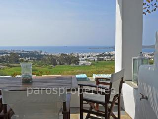 Very well presented 3 bedroom home on the hill abo - Paros vacation rentals