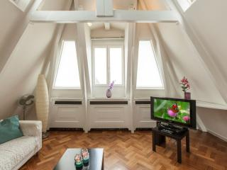 Spacious Museum View Penthouse apartment in De Pijp Noord with WiFi. - Amsterdam vacation rentals