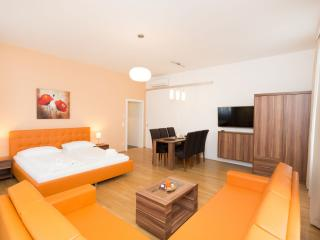 2 bedroom House with Internet Access in Vienna - Vienna vacation rentals