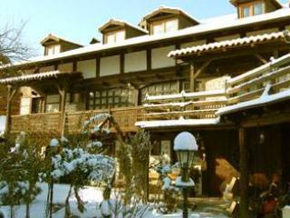 Total Chalets - Chalet Mila (fully catered) - Bansko vacation rentals