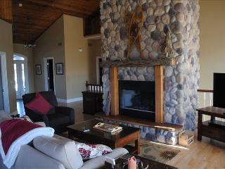 Awesome 5BR Home with hot tub, firep pit, wifi - Galena vacation rentals