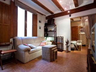 Carme Viveros apartment in El Carmen with airconditioning. - Valencia vacation rentals