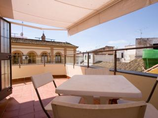 Menjibar apartment in Casco Antiguo with WiFi, airconditioning (warm / koud), privéparkeerplaats & … - Seville vacation rentals