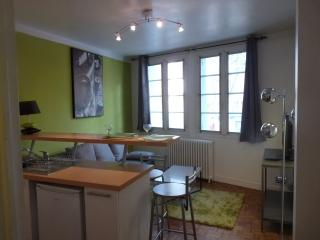 Bright 1 bedroom Toulouse Apartment with Internet Access - Toulouse vacation rentals