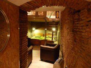 Cozy Condo with Internet Access and Washing Machine - Toulouse vacation rentals
