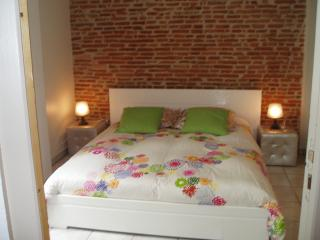 1 bedroom Apartment with Internet Access in Toulouse - Toulouse vacation rentals