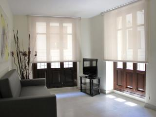 Negrito Art 1 apartment in El Carmen with WiFi, airconditioning, balkon & lift. - Valencia vacation rentals