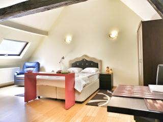 Comfortable 1 bedroom Brussels House with Internet Access - Brussels vacation rentals