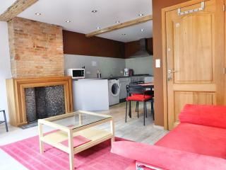 Manneken II apartment in Brussel centrum with WiFi. - Brussels vacation rentals