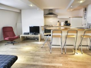 Manneken IV apartment in Brussel centrum with WiFi. - Brussels vacation rentals