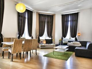Comfortable 2 bedroom House in Brussels - Brussels vacation rentals