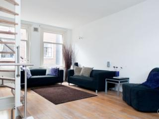 Grand Orange house - Amsterdam vacation rentals