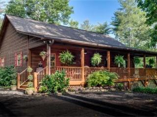 Luxurious peaceful Cabin 5 Bear's Cabin221 Trickling Branch Way Murphy NC - Murphy vacation rentals