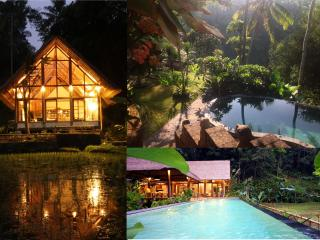 Constant Heaven-2 fabulous villas linked by stairs - Ubud vacation rentals