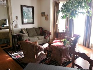 1 Bedroom Suite - Walk to MU $125/night - Columbia vacation rentals