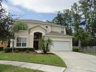 Grand Villa with Conservation Pool - Kissimmee vacation rentals