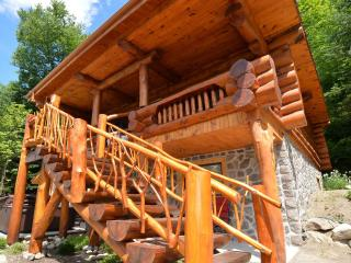 Bright 4 bedroom Saint Faustin Ski chalet with Dishwasher - Saint Faustin vacation rentals