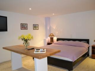 mt-001-Super Studio apt close to lleras, poblado - Medellin vacation rentals