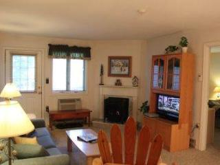 2BR condo with Queen beds, TV/VCR - B1 119B - Lincoln vacation rentals
