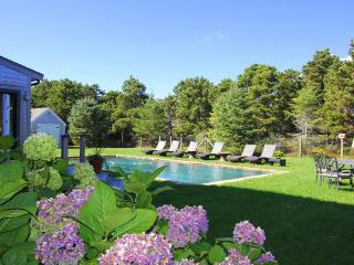 TALLA - South Beach, Pool, Walk to Beach, Luxury Home, Central A/C - Edgartown vacation rentals