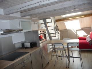 Le rue de l'ile - Annecy vacation rentals