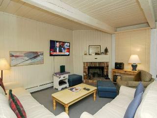 Bright 2 bedroom Condo in Aspen - Aspen vacation rentals