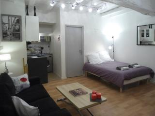 "Studio ""CHIC CITY"" station, shops, castle - Nantes vacation rentals"
